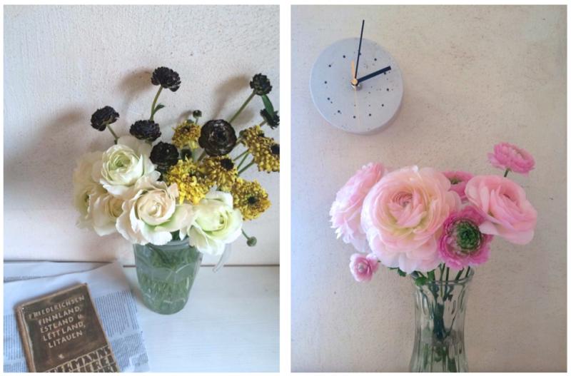 一般的な咲き方(写真黄色:左下)の他に、花びらの縁がギザギザしているフリンジ咲き(写真ピンク:右)や大輪咲き(写真ピンク:左)、ちょっと変わった咲き方のモロッコシリーズ(写真黄色:上、右)