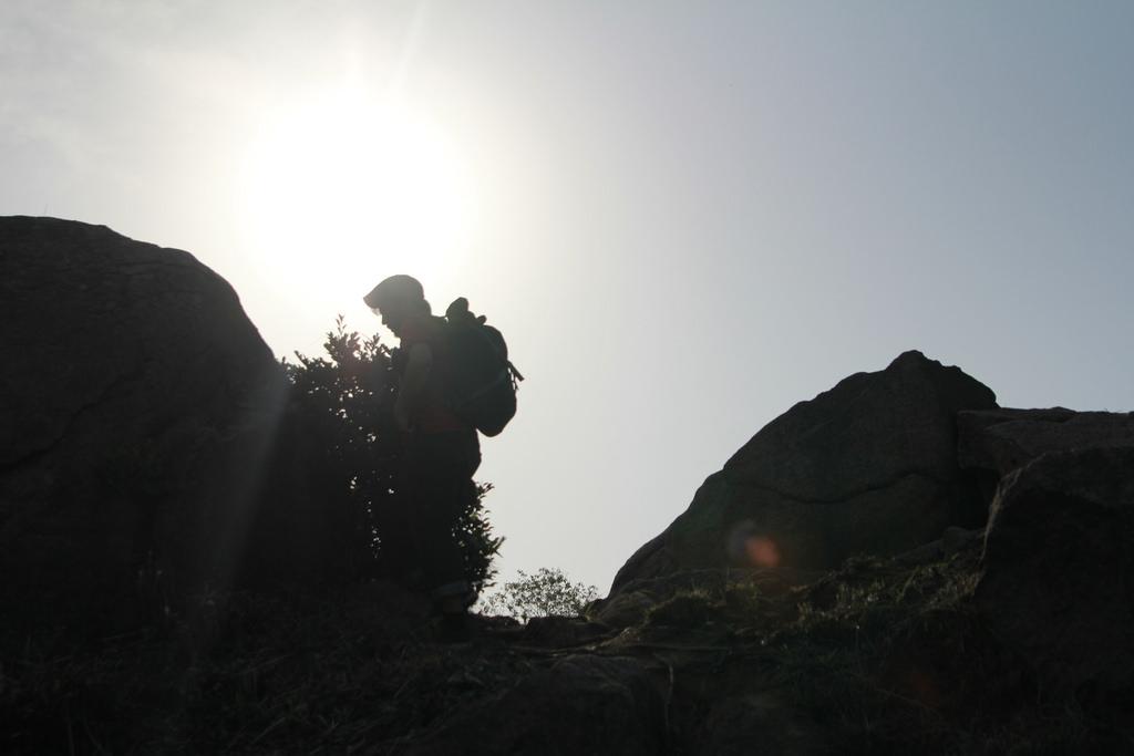 向島にある巨石、ここから中村さんと尾道の不思議な縁が始まった。