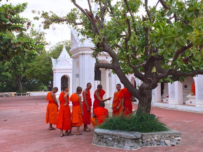 バンコクから乗り合いバンでナコンパトムへ。寺院の中に僧侶の学校があり、ちょうど休憩時間だったらしく、若い僧侶の皆さんが和気藹々おしゃべり中。片手にコーラ持ってたのが、なんだか違和感があり、さらに微笑ましく感じられた(笑)