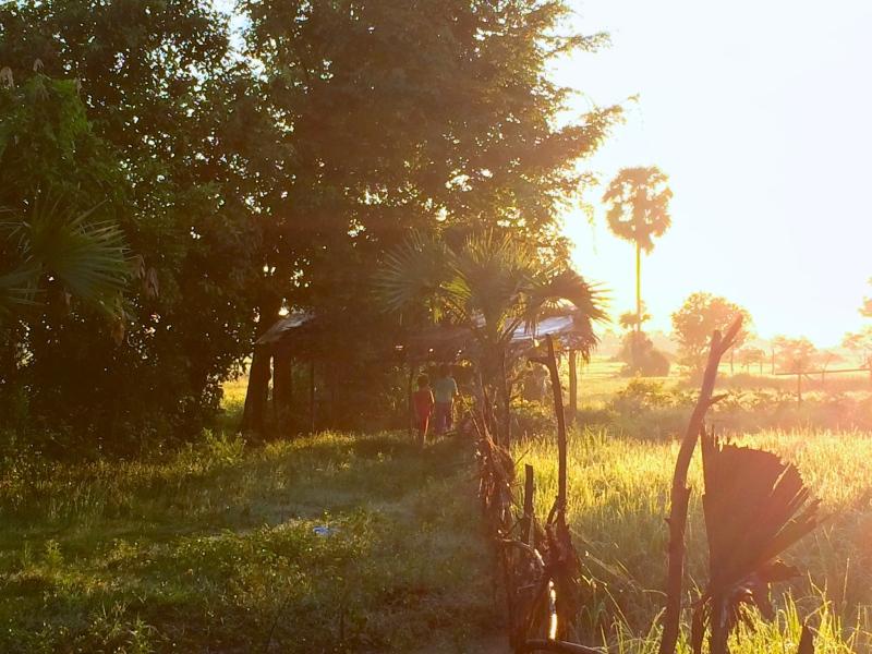 シェムリアップの朝日。シェムリアップでヨガリトリート施設に滞在中、他の参加者と一緒に早起きして朝日を観に行った。田舎の風景に朝日が映えて、清々しい一日の始まりを迎えた