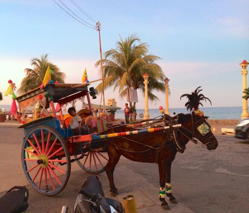 馬車。週末になると、ココはヨーロッパか!? と見間違えるほどのかわいらしい馬車が街を走っていた。東南アジアらしからぬ美しい街並が印象的