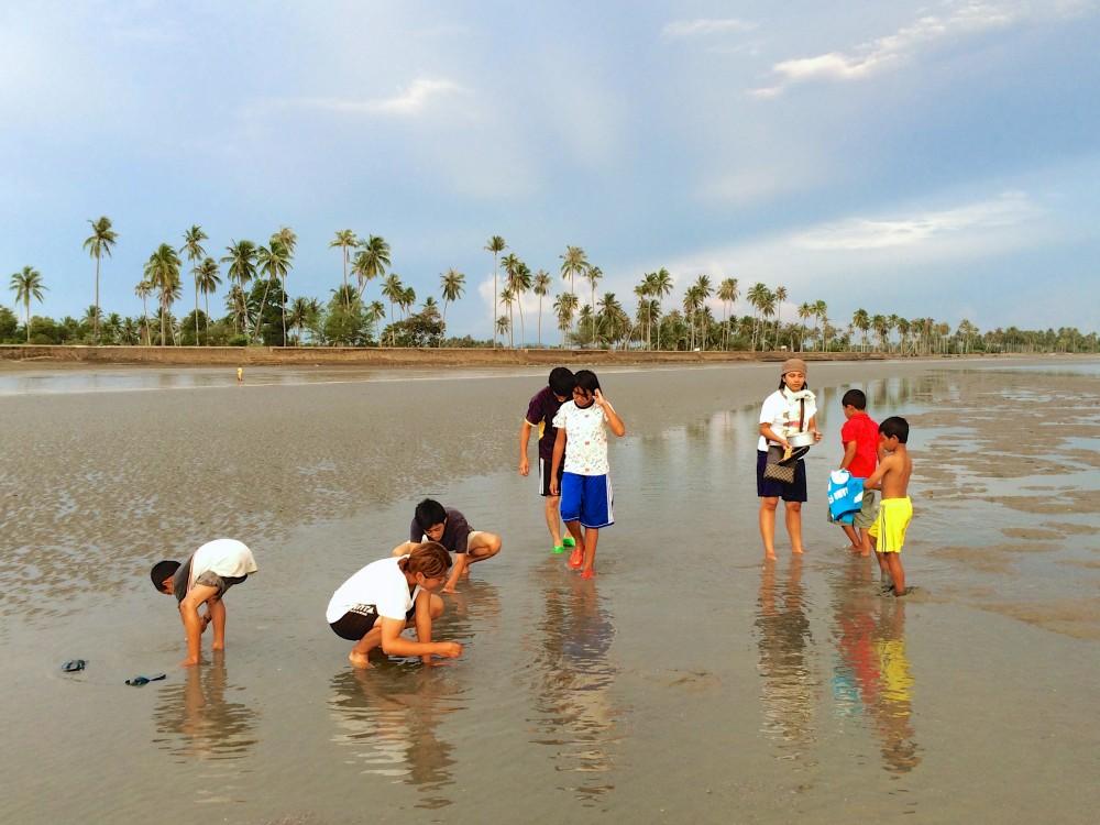 みんなで貝を拾う。貝殻ではなく、食用の貝を浜辺に行ってみんなで拾った。なんでも自給自足が基本