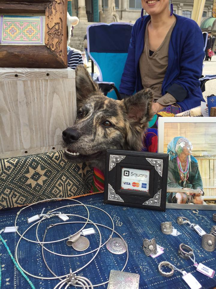 『安穏朝市』にて。すっかり接客上手な看板犬です。