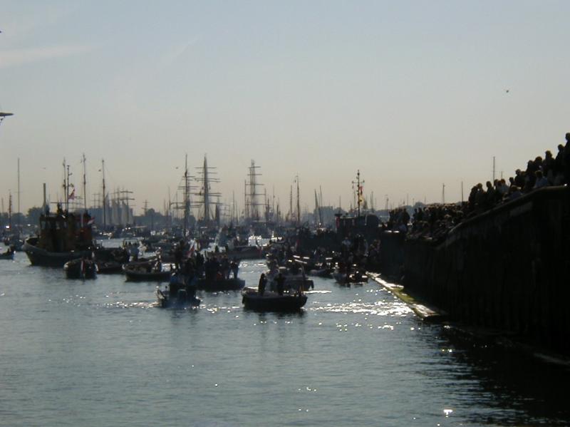 帆船が集まりびっしりとそのマストが立ち並んでいる様子