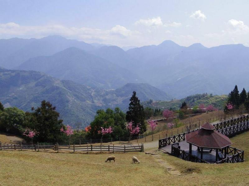 「埔里にある牧場」眺めが良くて最高の景色だった。羊がたくさんいてほのぼの癒される